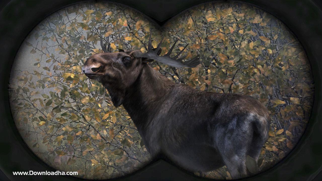 بازی Cabelas Big Game Hunter Pro Hunts برای XBOX360