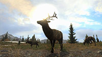 Cabelas Big Game Hunter Pro Hunts screenshots 06 small دانلود بازی Cabelas Big Game Hunter Pro Hunts برای PC